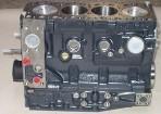 Rumpfmotor Iveco/Renault/Ducato