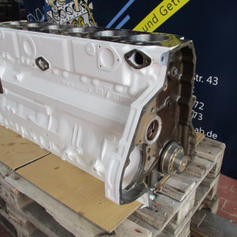MAN Short Block Gas / Biogas E2866